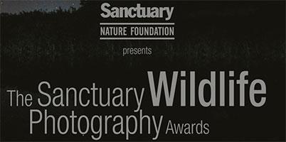 Sanctuary Wildlife Photography Awards
