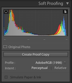 Soft Proofing Menu in Lightroom