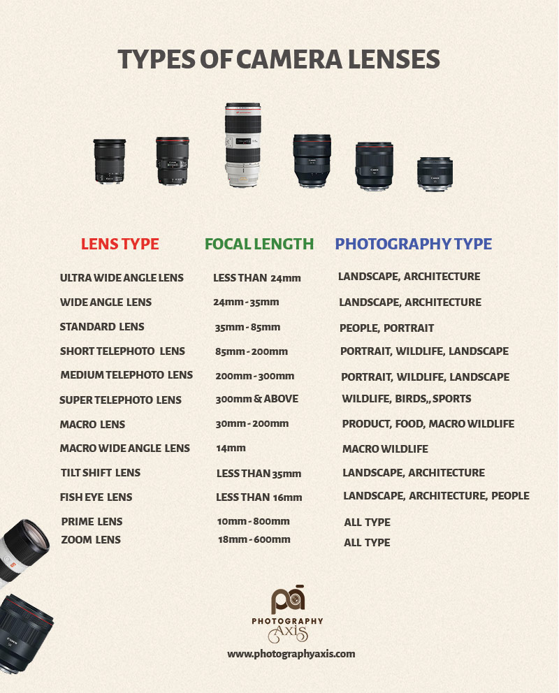 Types of camera Lenses Infographic