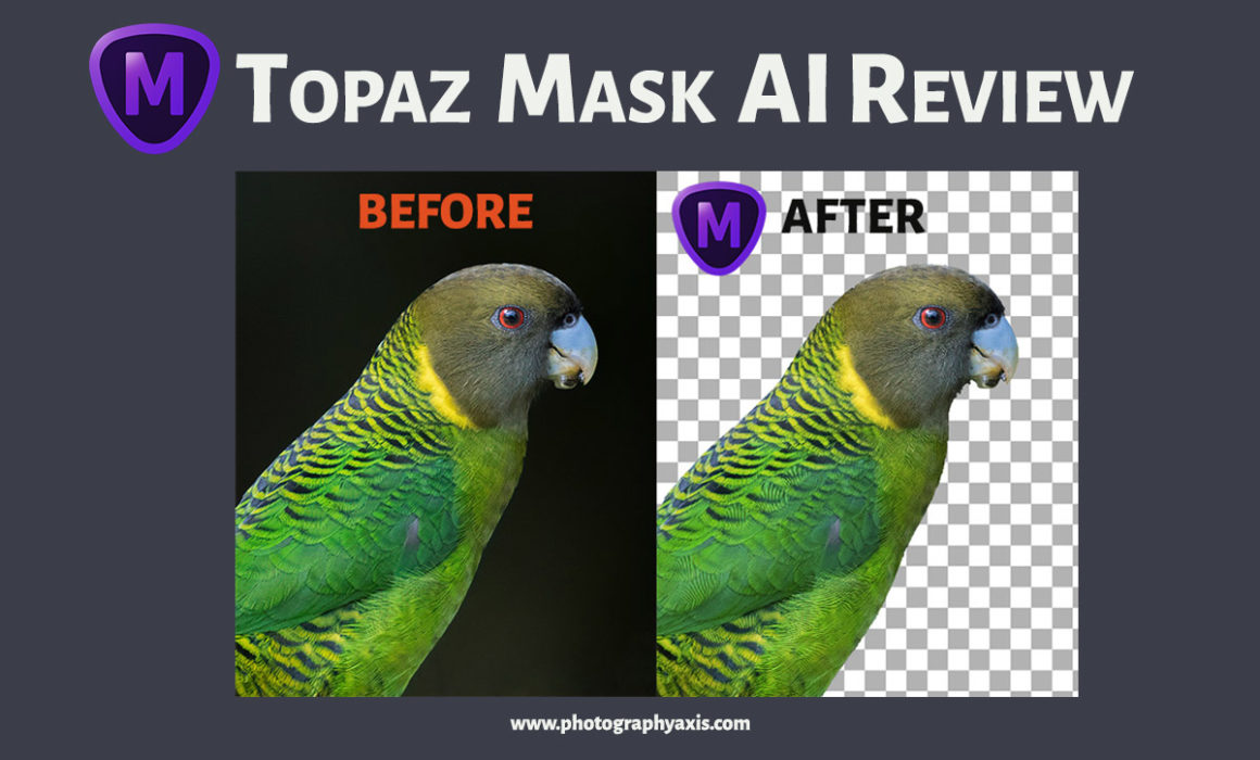 Topaz Mask AI Review