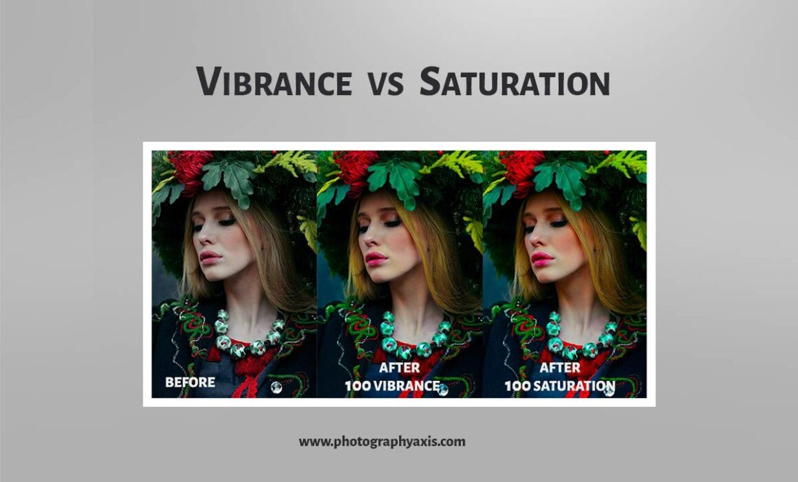 Vibrance vs Saturation Photography