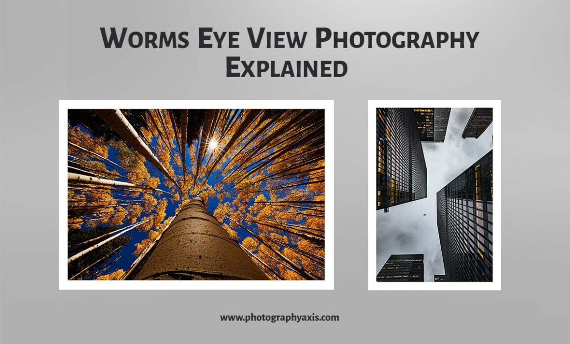 Worms Eye View Photography Explained