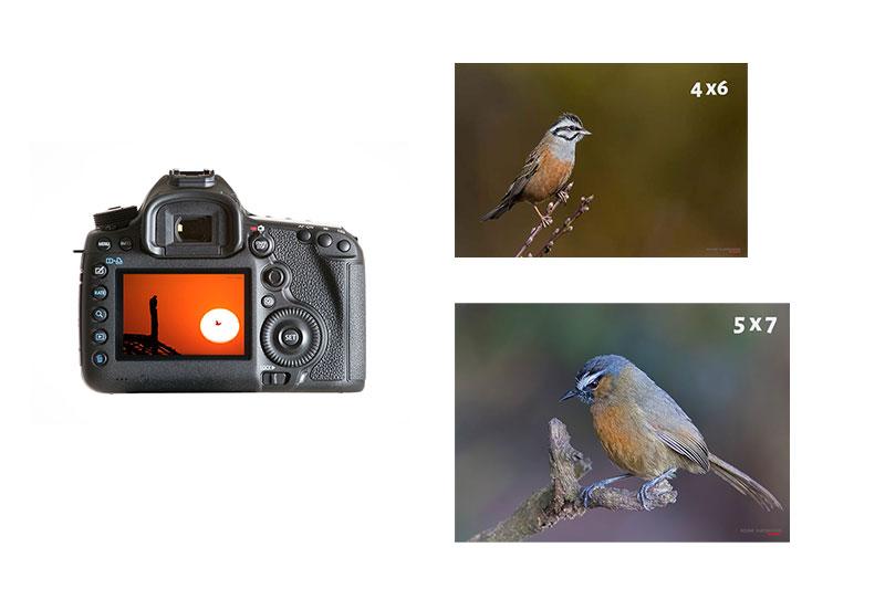 camera aspect ratio vs image aspect ratio