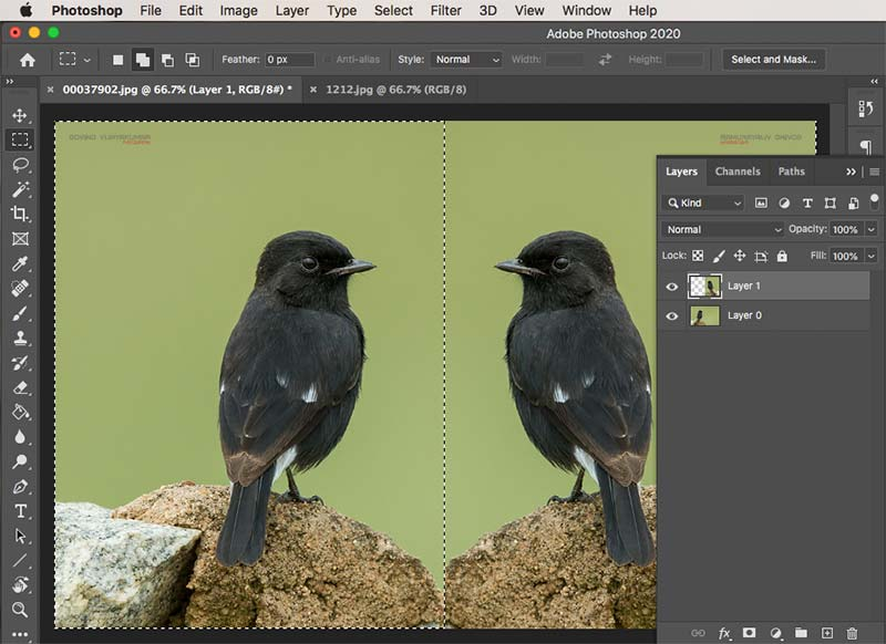 layer cropping Photoshop
