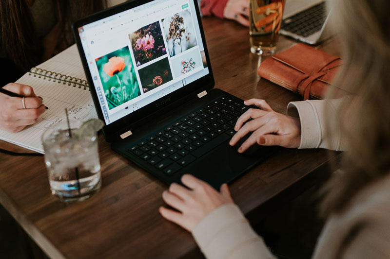 woman viewing photos in computer